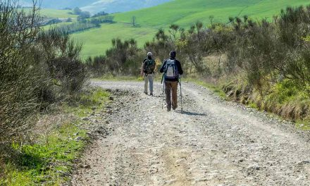 The Via Francigena