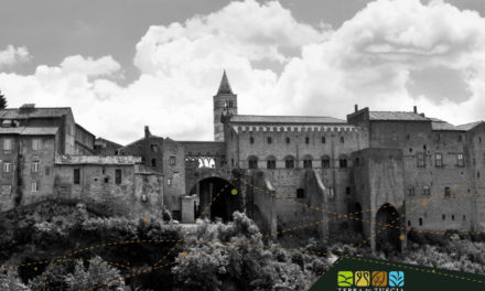 The Middle Ages, the golden age of Viterbo