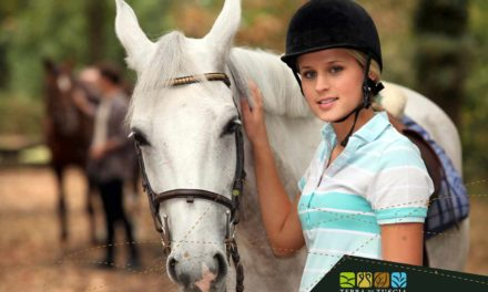 Horse Riding: Exploring Tuscia In A Different Way