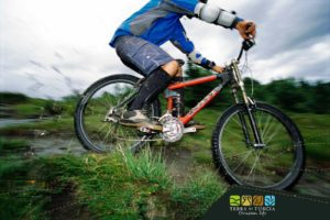 gita in mountain bike