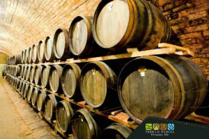 wines from Tuscia