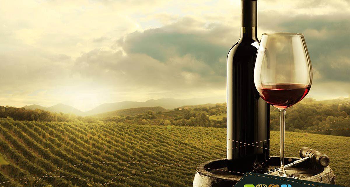 I migliori vini della Tuscia