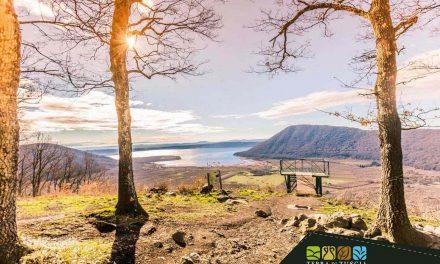 Lake Vico and its Natural Reserve