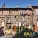 Summer events in Tuscia